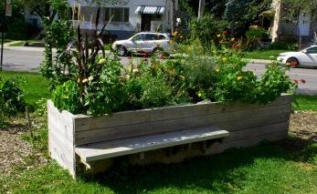 Planter garden.